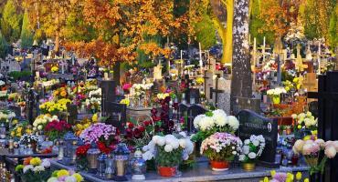 Zmarli nie potrzebują kwiatów? [Sonda]