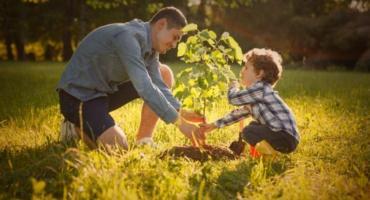 """Zapraszamy do udziału w akcji """"Jedno dziecko – jedno drzewo"""""""