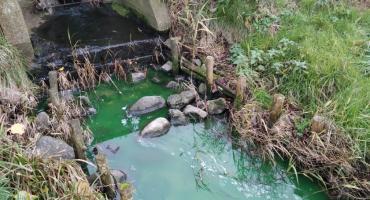 Wyciek nieznanej substancji do jeziora Miejskiego w Złotowie