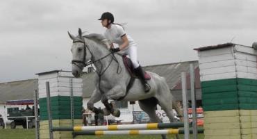 Wyniki foto-konkursu Stadniny koni Runowo
