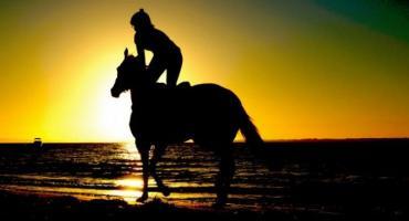 Nauka jazdy konnej – koszty