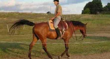 Strój jeździecki dla początkujacych - część 1