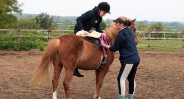 Jak zacząć naukę jazdy konnej?