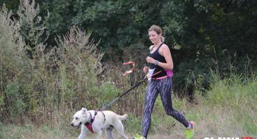 Na sportowo z psami. Bieg na czterech łapach [ZDJĘCIA]