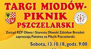 Piknik Pszczelarski  i targi miodów