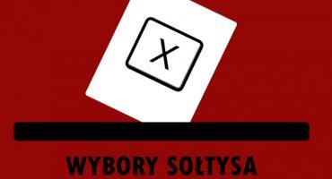 Trwają wybory na sołtysów w Gminie Oława, zobacz kogo już wybrano