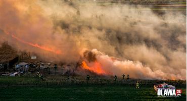 Duży pożar traw. Zobacz zdjęcia z drona