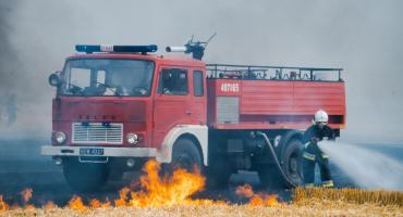 Dwa duże pożary. Płonęło zboże i ściernisko [GALERIA]
