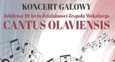 Jubileusz  Zespołu Wokalnego Cantus Olaviensis