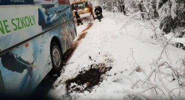 Drzewo na drodze. Autobus z dziećmi zatrzymał się nad skarpą.