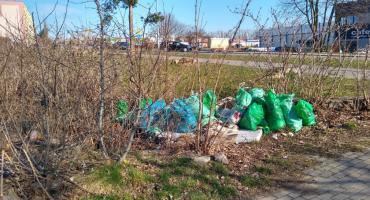 Mieszkańcy potrafią sortować śmieci