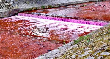 Czerwona rzeka w Miłkowie