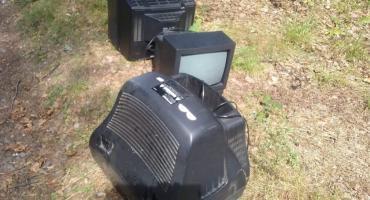 Telewizory w lesie