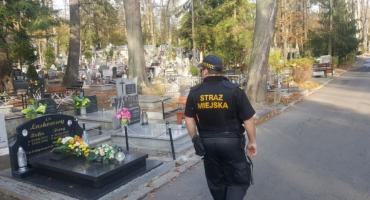 Działania Straży Miejskiej i organizacja ruchu na cmentarzach