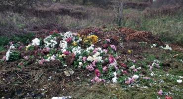Wyrzucali kwiaty za płot...