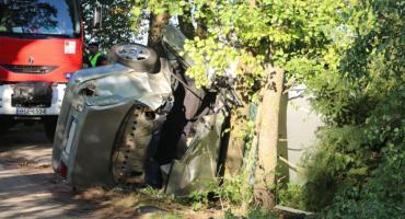 Audi A6 zagięło się na drzewie