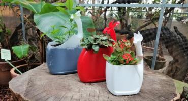 W niedzielę ekologiczne warsztaty ogrodnicze na przywitanie wiosny