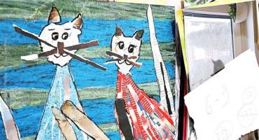 W piątek kocia wystawa na legnickiej PWSZ