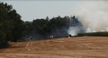 Gorący dzień legnickich strażaków. Gasili pożar ścierniska i pszenicy