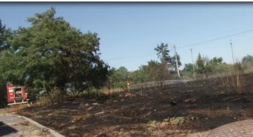 Strażacy walczyli z pożarem nieużytków przy ul. Spokojnej