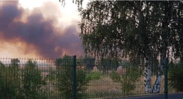 Kolejny duży pożar. Paliło się pole pod Legnicą