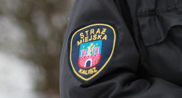 Czy strażnicy miejscy reagują na wskazania monitoringu?