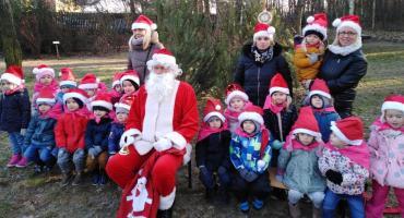Eko Przedszkolaki dbają o leśne zwierzęta