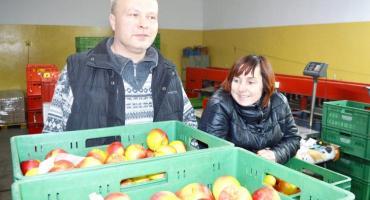 Jak wygląda praca w sadzie i jakie soki owocowe najlepiej wybierać? Pamułowe zdradzają kulisy jabłkowego biznesu