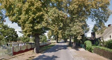 Droga Tleń-Lniano będzie modernizowana. Tylko czy musi zostać wycięte aż 120 starych drzew?