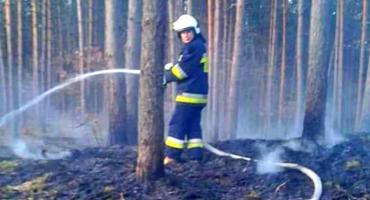Pożar w Zdrojewie. Było o włos od katastrofy, jak rok temu w Pohulance