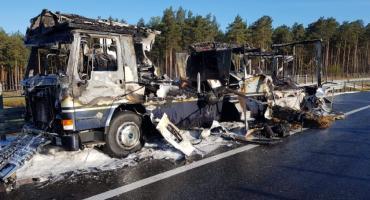 Mamy zdjęcia z akcji gaśniczej na A1, podczas której spłonął koń