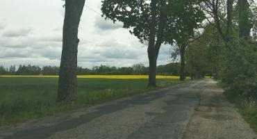 Droga jest wąska, asfalt pozostawia wiele do życzenia. Kiedy doczekamy się przebudowy?