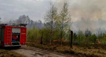 Pożary w Gajewie - policjanci złapali seryjnego podpalacza. Wywołał co najmniej pięć pożarów i spalił majątek za kilkaset tys. zł