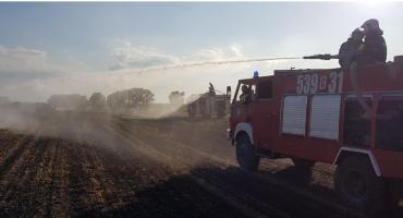 Do gaszenia pożaru ruszyły 4 zastępy straży pożarnej. Nie ma dnia bez interwencji strażaków [ZDJĘCIA]