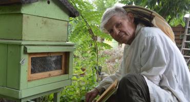Trudny rok pszczelarza Eugeniusza Schmidta. Straty ma ogromne