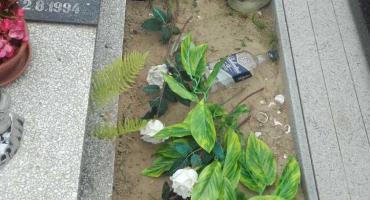 Libacje na świeckim cmentarzu. Na nagrobkach można znaleźć... wymiociny!