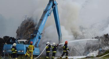 Pożar w Dworzysku. Płoną śmieci w Vistuli Park. Co spowodowało ogień? [ZDJĘCIA] [AKTUALIZACJA]