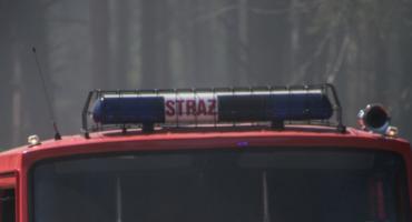 Autostrada A1: Dachowanie w okolicach Nowych Marz