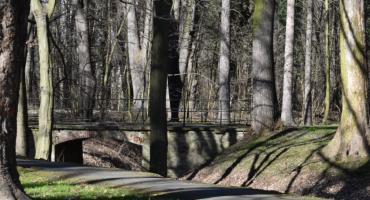 Projekt na park