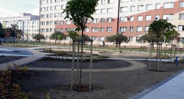 Zniknęło stare, asfaltowe boisko  przy ul. Hermana
