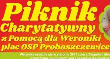 Piknik charytatywny w Proboszczewicach