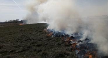 Tej wiosny to już ponad 40 pożarów nieużytków