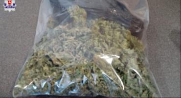 300 gram marihuany u 33 latka z Ryk