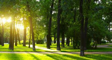 Radni miejscy nie chcą porozumienia z powiatem i stworzenia parku?