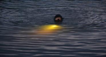 W jeziorze w Kożyczkowie znaleziono zwłoki mężczyzny