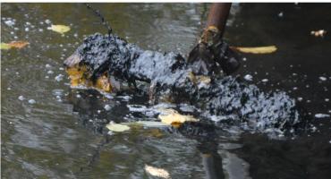 Wójt reaguje i wszczyna postępowanie ws. zanieczyszczania rzeki w Młynku