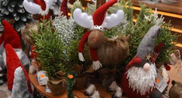Centrum Garden Life w Kiełpinie – największa na Kaszubach oferta ozdób świątecznych!