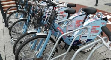 Podsumowano pierwsze półrocze działania roweru Mevo
