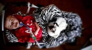 Iza Tomaczkowska potrzebuje pomocy - wesprzyj zbiórkę na rehabilitację