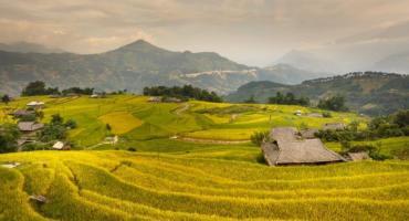 Ekologiczny - czyli jaki? - Jak zbudować dom ekologiczny?
